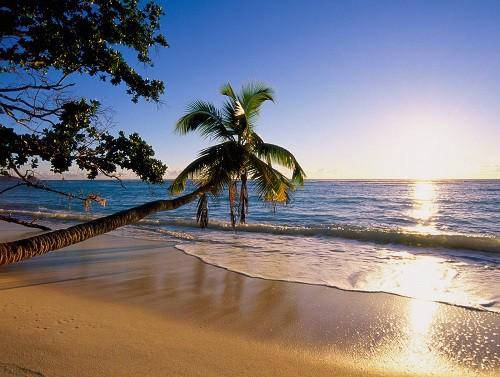 Beach Island Vacation